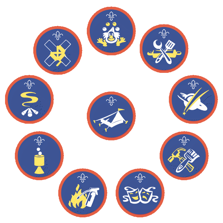 A selection of Scouts activity badges