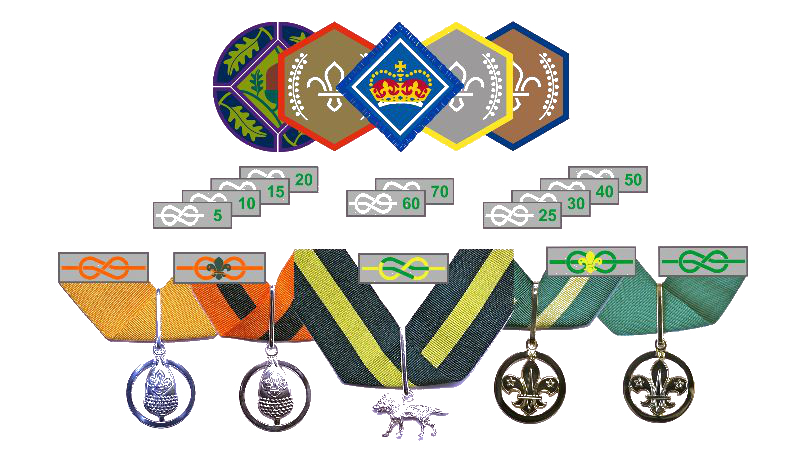 A selection of awards that can be achieved by young people and volunteers in The Scouts