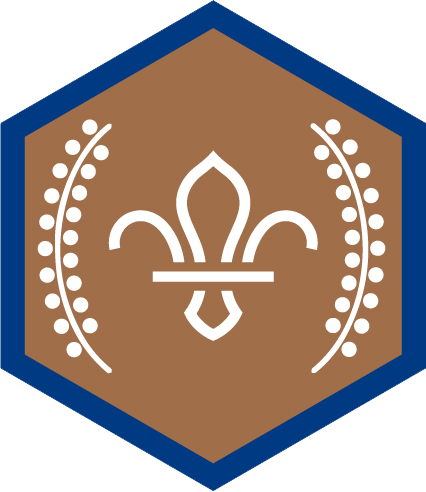 Chief Scout's Bronze Award for Beaver Scouts