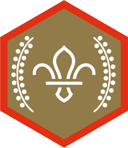 Chief Scout's Gold Award for Scouts